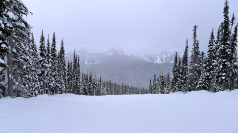 The Skier's Guide to Whistler Vancouver   StyleCaster