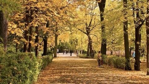 Ways To Take Advantage of Fall Weather | StyleCaster