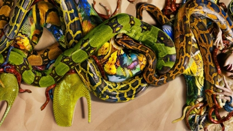 Alexander McQueen: Spring Collection Full of Snakes | StyleCaster