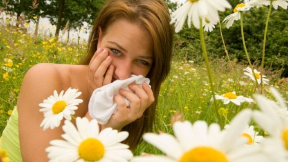 Seasonal Allergies – 5 Ways to Beat the Spring Sneeze | StyleCaster