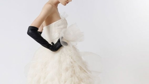 Vera Wang Collaborates with David's Bridal – Budget Brides Everywhere Rejoice   StyleCaster