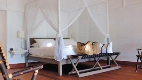 Interior Designer Nina Freudenberger Chats Safari Chic for the Home   StyleCaster