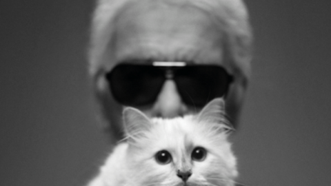 """Karl Lagerfeld To Open """"World Of Karl"""" Boutique in Paris This Winter 