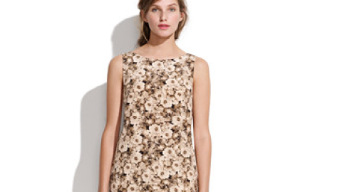 Want: A Party-Perfect Shift Dress From Madewell | StyleCaster