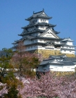 Top 10 Destinations Around the World to See the Cherry Blossoms