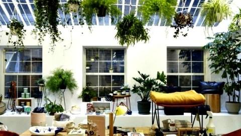 Steven Alan's 6 Easy Home Decorating Tips | StyleCaster