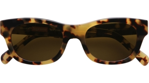 Want: The Perfect Pair Of Tortoisehell Sunglasses (We Found 'Em) | StyleCaster