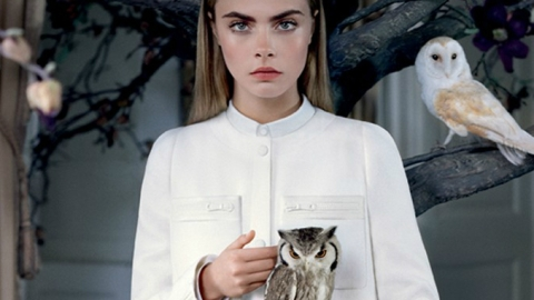 Why Cara Delevingne Keeps Landing Fall Campaigns: An Expert's Take | StyleCaster
