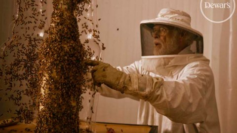 Stuff We Love: Using 80,000 Bees Dewar's Creates a Bottle Out of Honeycomb | StyleCaster
