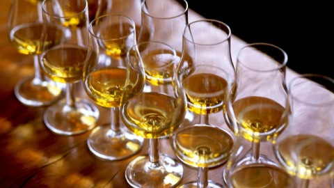 Scotch Drinking 101: Tips For Beginners | StyleCaster