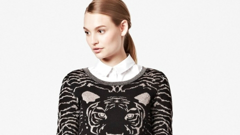 Want: A Cool Tiger-Print Sweater That's Totally Affordable   StyleCaster
