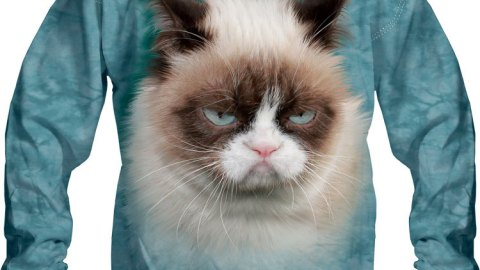 Want: A Grumpy Cat Sweatshirt (Yes, They Exist!) | StyleCaster