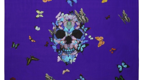 Our Favorite New Collaboration: Damien Hirst's Scarves for Alexander McQueen   StyleCaster