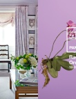 Radiant Orchid Interiors Inspired by Pantone's 2014 Color of the Year