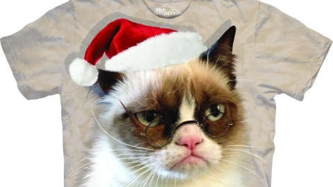 Check Out Grumpy Cat (In a Santa Hat!) | StyleCaster