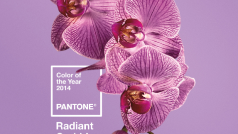 Pantone Reveals The Color of 2014: Radiant Orchid | StyleCaster