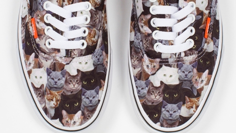 Sneakers Covered in Cats?   StyleCaster
