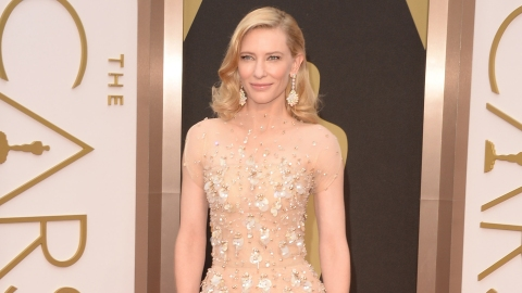 Oscars Red Carpet 2014: All the Dresses   StyleCaster