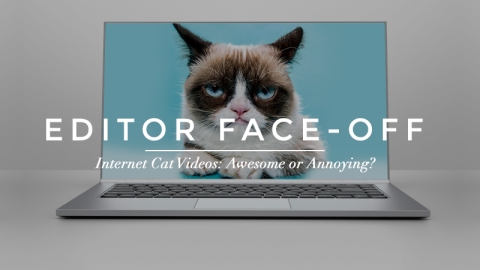 Cat Videos: Awesome or Annoying?    StyleCaster