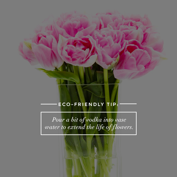vodka in flowers 50 Ridiculously Easy Eco Friendly Tips Anyone Can Master