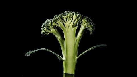 Broccoli Stalks are the Next Kale | StyleCaster