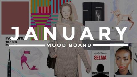 January Mood Board | StyleCaster