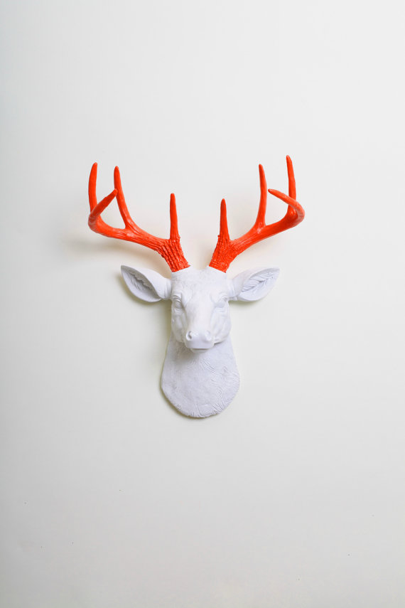 20 Unexpected Things To Hang On A Wall Stylecaster