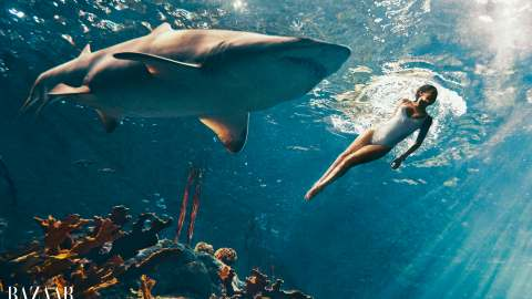 Wow: Rihanna Swims With Sharks | StyleCaster