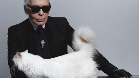 Lagerfeld's Cat Makes Millions | StyleCaster