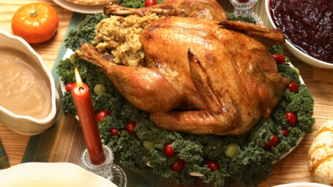 Thanksgiving Detox: How to Recover From Turkey Day | StyleCaster