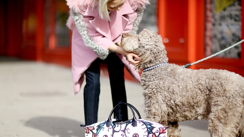 What It Means Being a Dog/Cat Person | StyleCaster