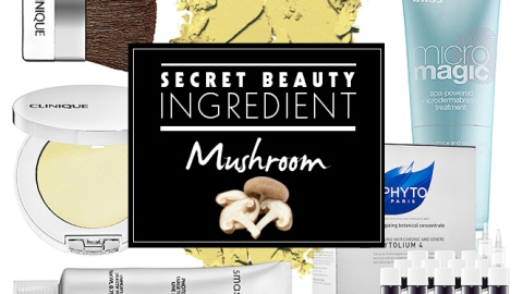 Secret Beauty Ingredient: Mushroom   StyleCaster