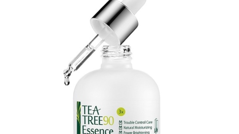 Why You Need Tea Tree Oil In Your Life | StyleCaster