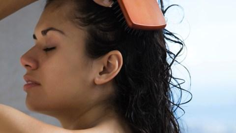 The Best Brushes For Wet Hair | StyleCaster