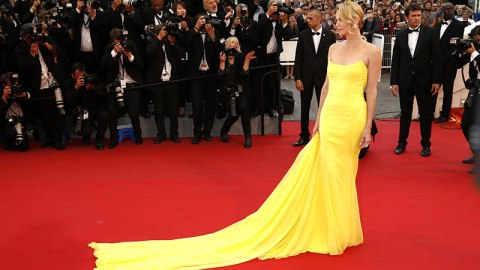 30 Incredible Cannes Red Carpet Dresses   StyleCaster