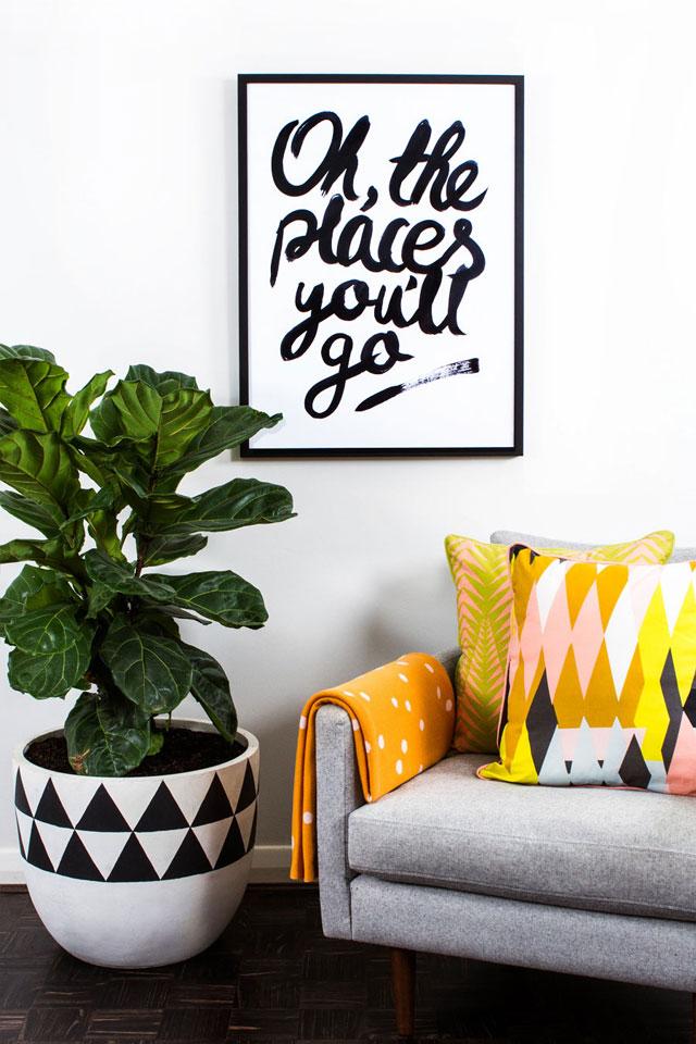 indoor plants decorating idea