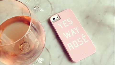 12 Amazing Bottles of Rosé to Try This Summer—Under $25   StyleCaster
