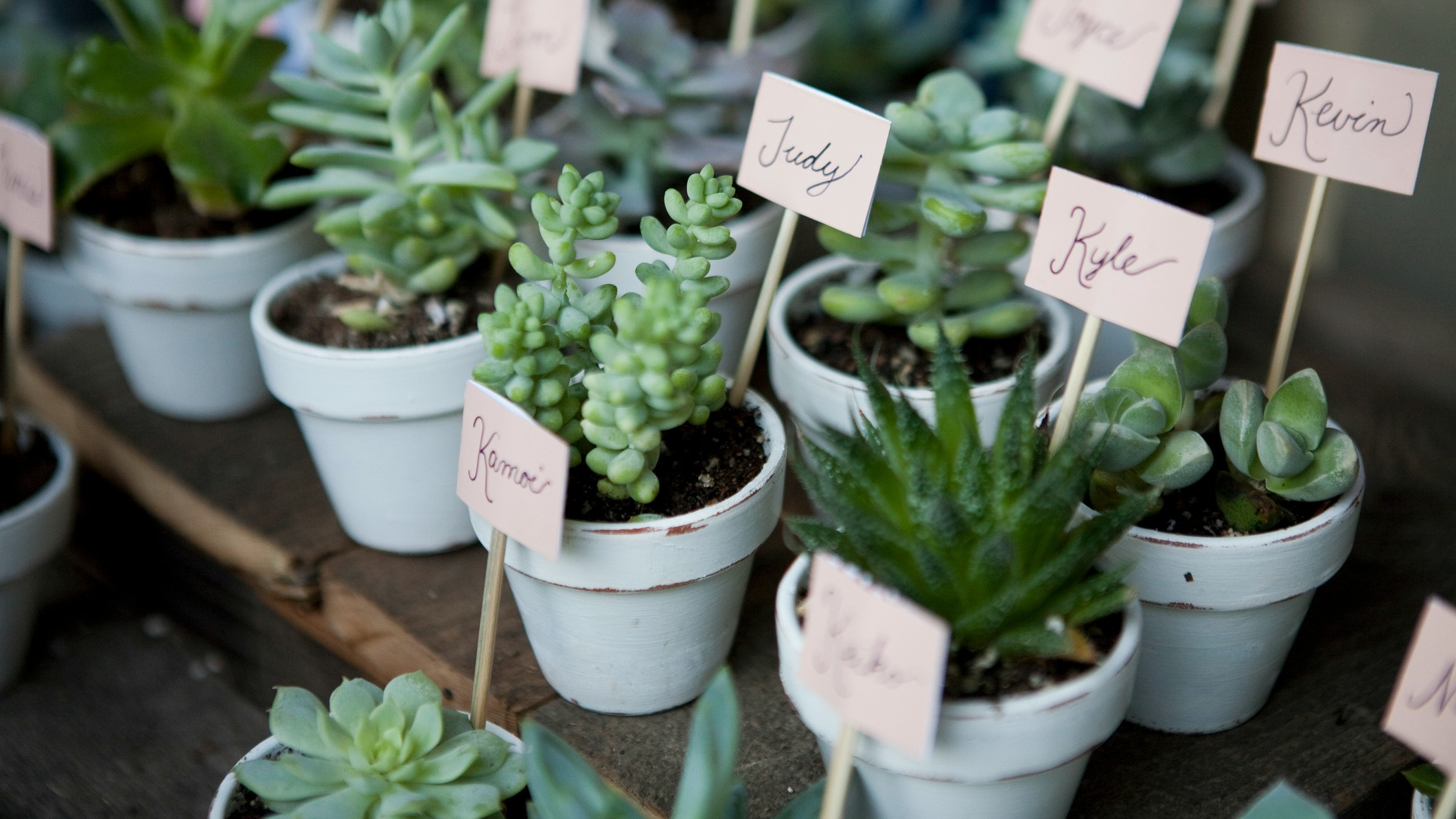 Cool Wedding Favor Ideas You Can DIY in 3 Steps or Less