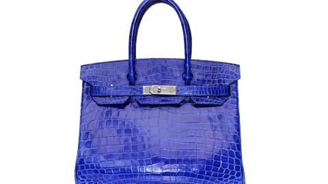 A Birkin Bag Without the Birkin? | StyleCaster