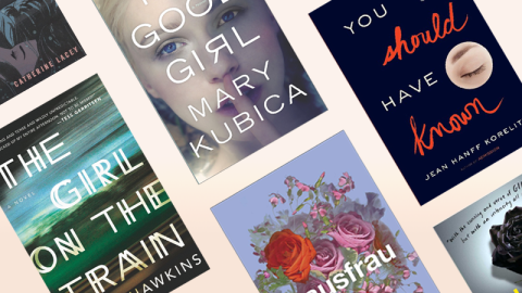 Every Book Called 'The New Gone Girl' | StyleCaster