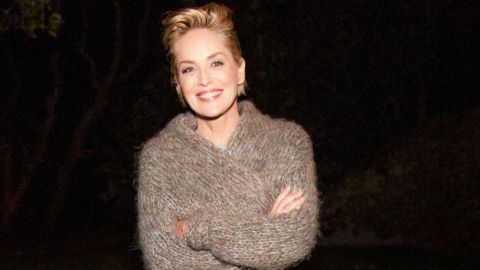An Ode to Sharon Stone's Underrated Style  | StyleCaster