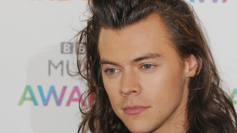 See Harry Styles' Dramatic Fashion Transformation | StyleCaster