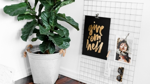 40 Stylish Home Decor Finds for Under $100  | StyleCaster