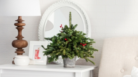 Deck Your Hall with These Gorgeous Christmas Tree Ideas | StyleCaster