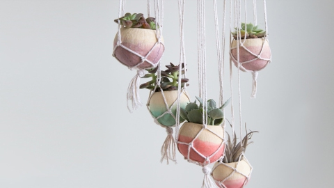These DIY Plant Hangers Are the Chicest Way to Display Your Succulents | StyleCaster