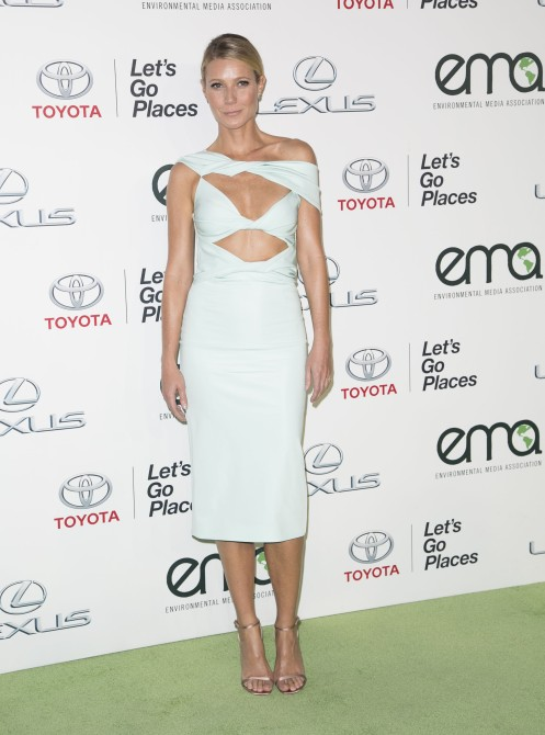 Celebrities attend 25th annual Environmental Media Awards at Warner Brother Studios Lot. Featuring: Gwyneth Paltrow Where: Los Angeles, California, United States When: 24 Oct 2015 Credit: Brian To/WENN.com