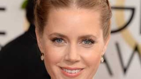 How to Get Amy Adams' Playful Braided Updo   StyleCaster