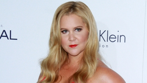 Amy Schumer Won't Take Pictures with Fans Anymore | StyleCaster