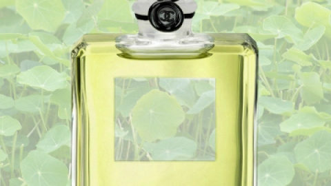 The Best Green Perfumes for Summer | StyleCaster