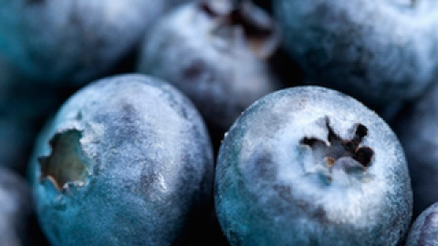 8 Foods to Add to Your Diet to Prevent Wrinkles | StyleCaster
